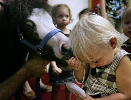Two-year-old Jenna Davis gets hands-on with a horse named Magic at the University City Church of Christ's VBS in Gainesville