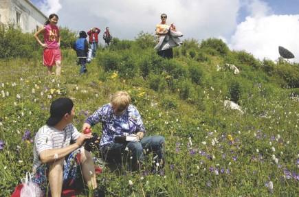 On a flower-covered hillside in rural Kazakhstan