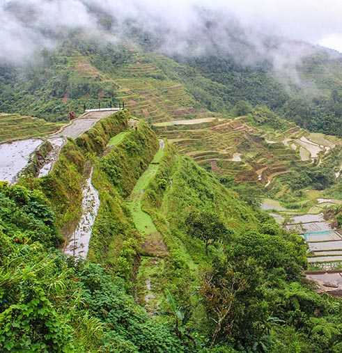 A view from the Banaue Rice Terraces