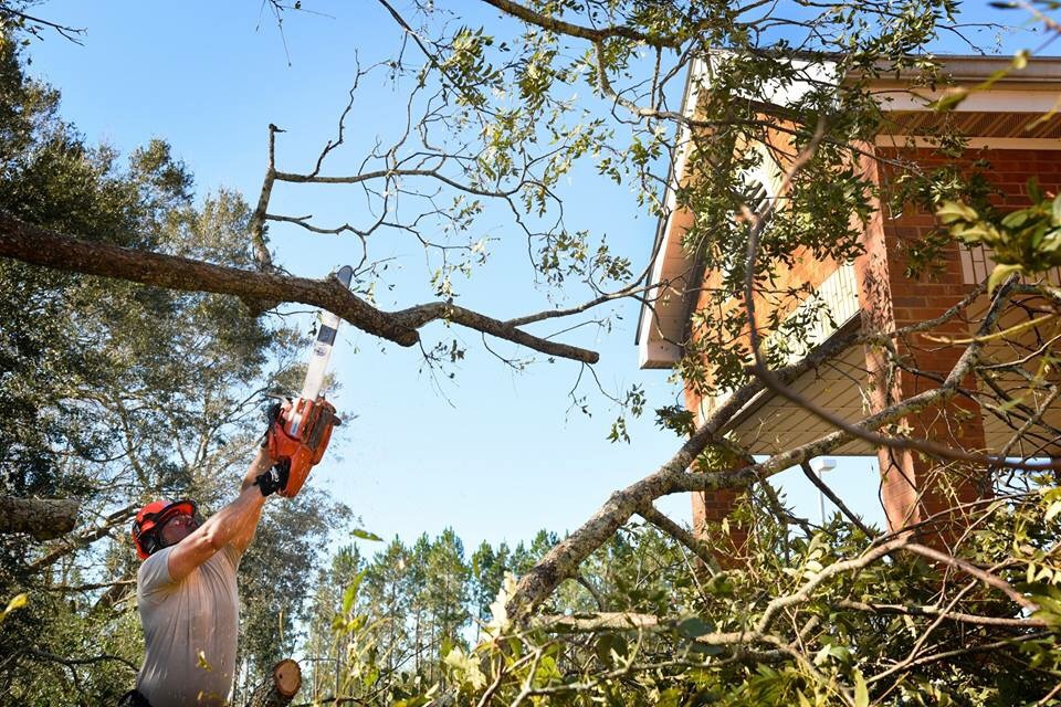U.S. Air Force Tech. Sgt. Ben Carlisle, a structural craftsman from the 116th Air Control Wing, Georgia Air National Guard, chainsaws a fallen tree during Hurricane Michael relief efforts, Seminole County, Ga., Oct. 12, 2018.
