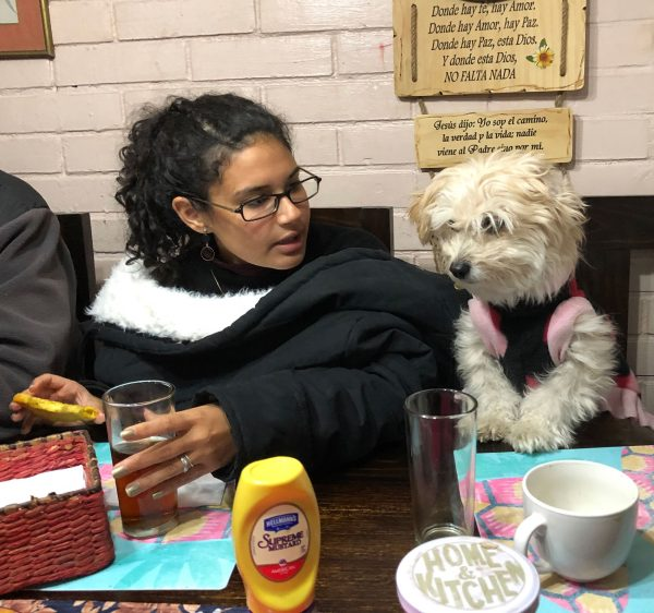 Cici García, a Venezuelan living in Ecuador, hangs out with Sophie, a sweater-wearing, 10-year-old Maltese-poodle mix while visiting her sister in Santiago, Chile.