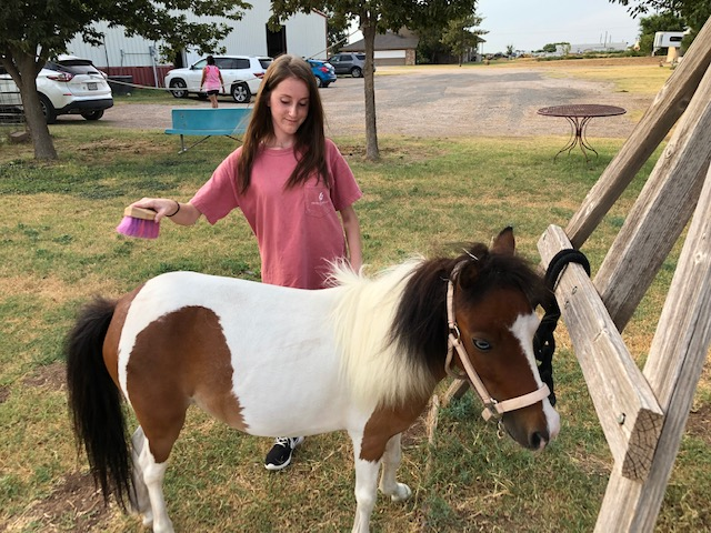 Kimbree Houston, 18, of Lubbock, Texas, brushes her horse, Sunshine.