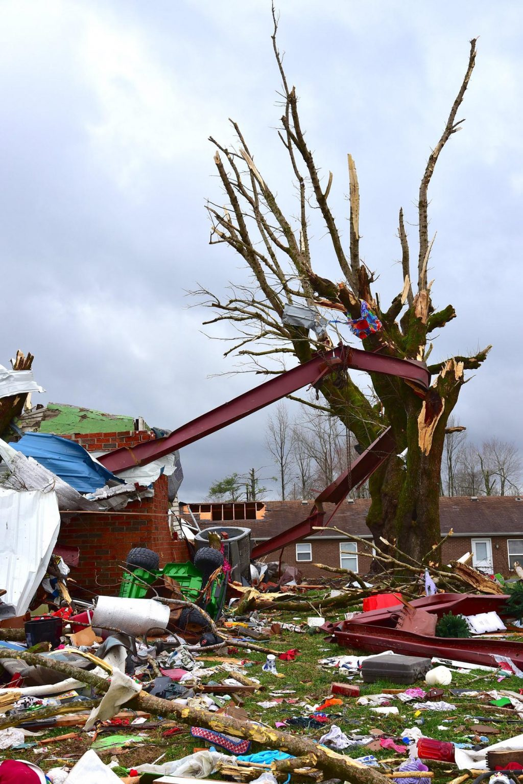 A metal beam is wrapped around a tree after an F-4 tornado hit Cookeville, Tenn.