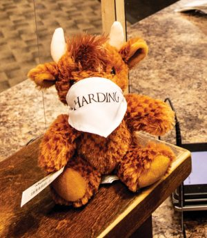 At Harding University, even a plush Bison mascot has donned a mask.